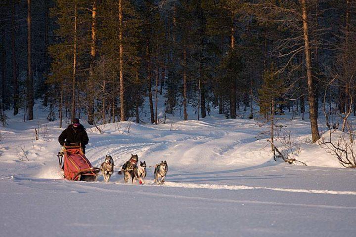 David at full speed at lake Tjålmak.