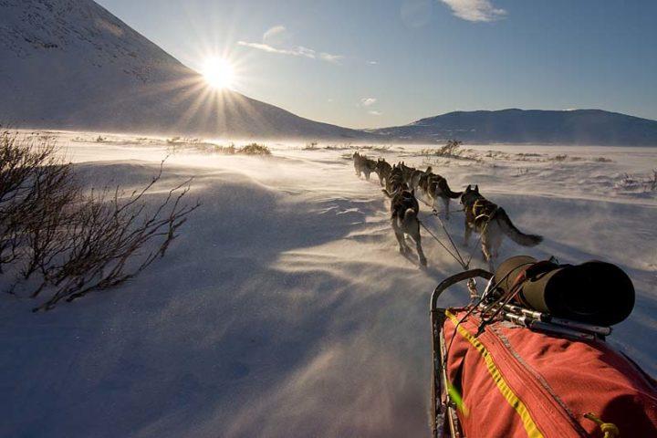 Dog sledding in the west end of Alggavagge, Sarek National Park.