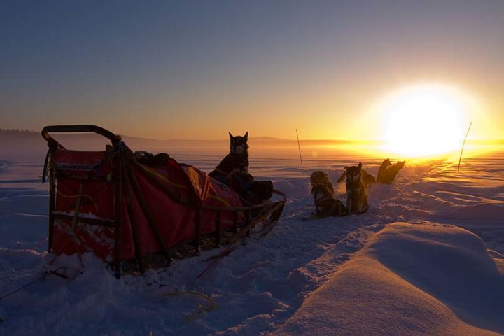 Time for tea in the sun set. Arctic light in the Swedish Lapland.
