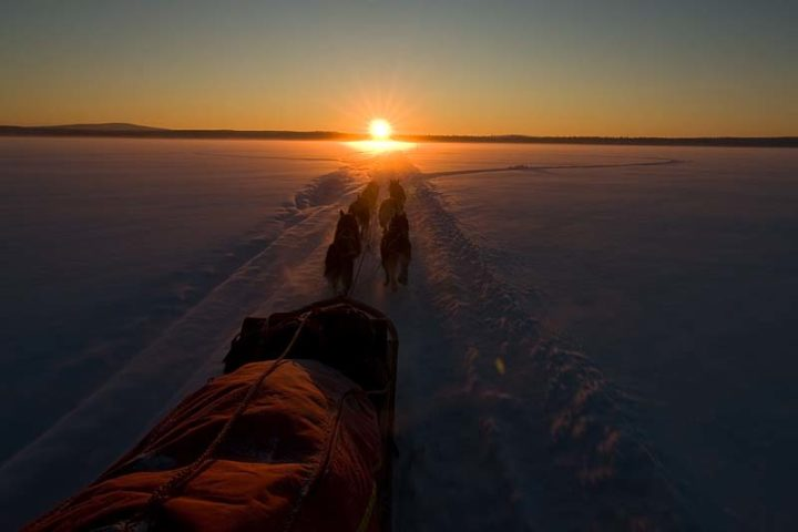 """In to the sun set with our dog teams like the cowboys always have done."