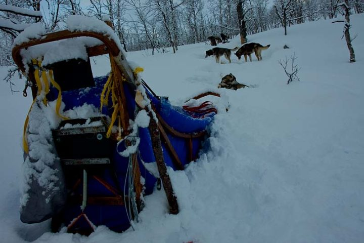 We had to take away the snow from the sleds and tents several times during the stay in this camp.
