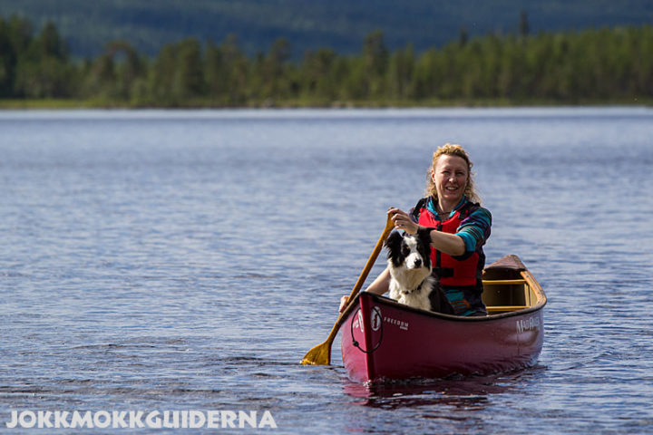 In the canadian canoe there's room for a dog. Stina with the Border Collie Issa. Lake Purkijaure.
