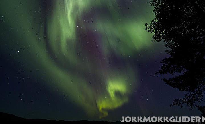 Northern lights in Jokkmokk. Aurora borealis