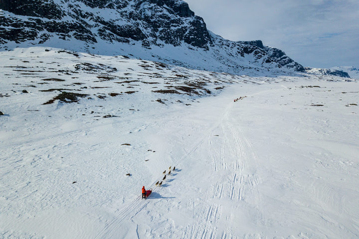 Air photo of dog team on the tour: Sled dog adventure through Sjaunja and Kebnekaise