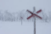 Winter trails trail crosses red X at the top. Picture from the dog sled trip: With dog sled to the Gate of Sarek National Park.