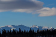 Towering mountain peaks over virgin forest on the dog sled trip With dog sled to the Gate of Sarek National Park