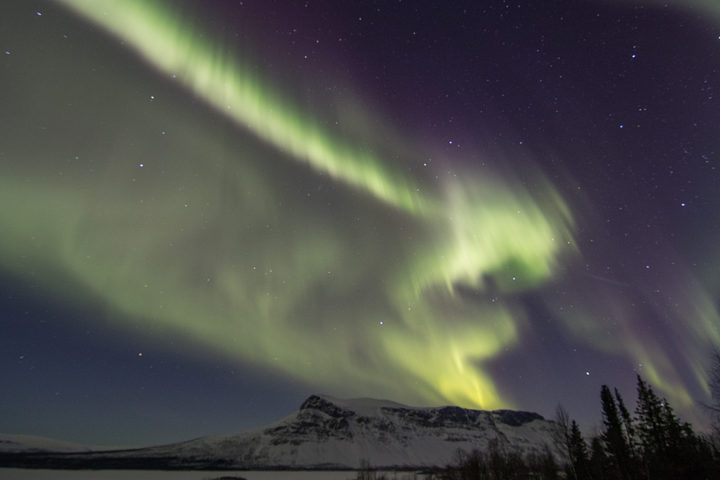 Northern lights Aurora Borealis at the dog sled expedition Explore Sarek National Park.