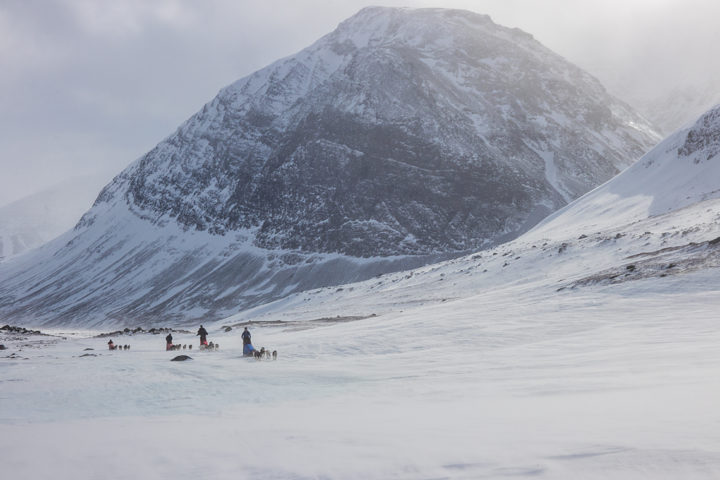 Dog teams in the center of Sarek. Picture from the expedition tour Explore Sarek National Park.