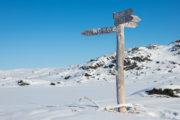 Vägval, skylt till norska gränsen. Vinter i Lappland på tur Med huskies längs norra Kungsleden.