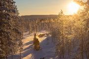 renskötare i skogen en januarimorgon. Foto taget på turen kallad Följ med samiska renskötare i deras dagliga arbete.