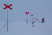 Swedish mountains in winter and red cross trail markers. Dog sledding tour in Lapland.