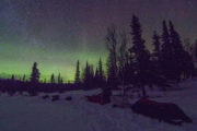 Northern lights on the dog sledding tour called Crossing Lapland with dog sled.