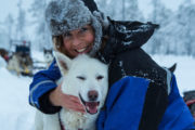 Cuddle with huskies on a husky tour.