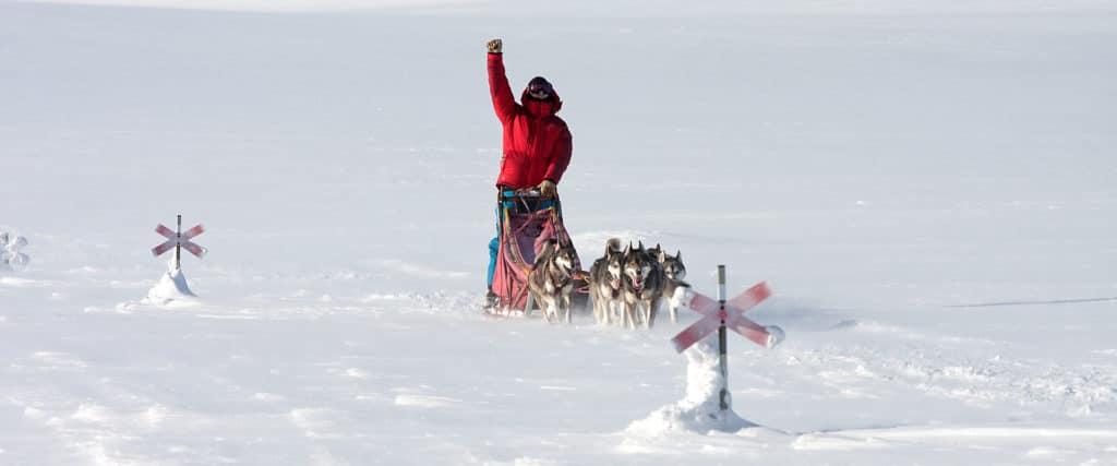 Långa hundspannsturer och expeditioner