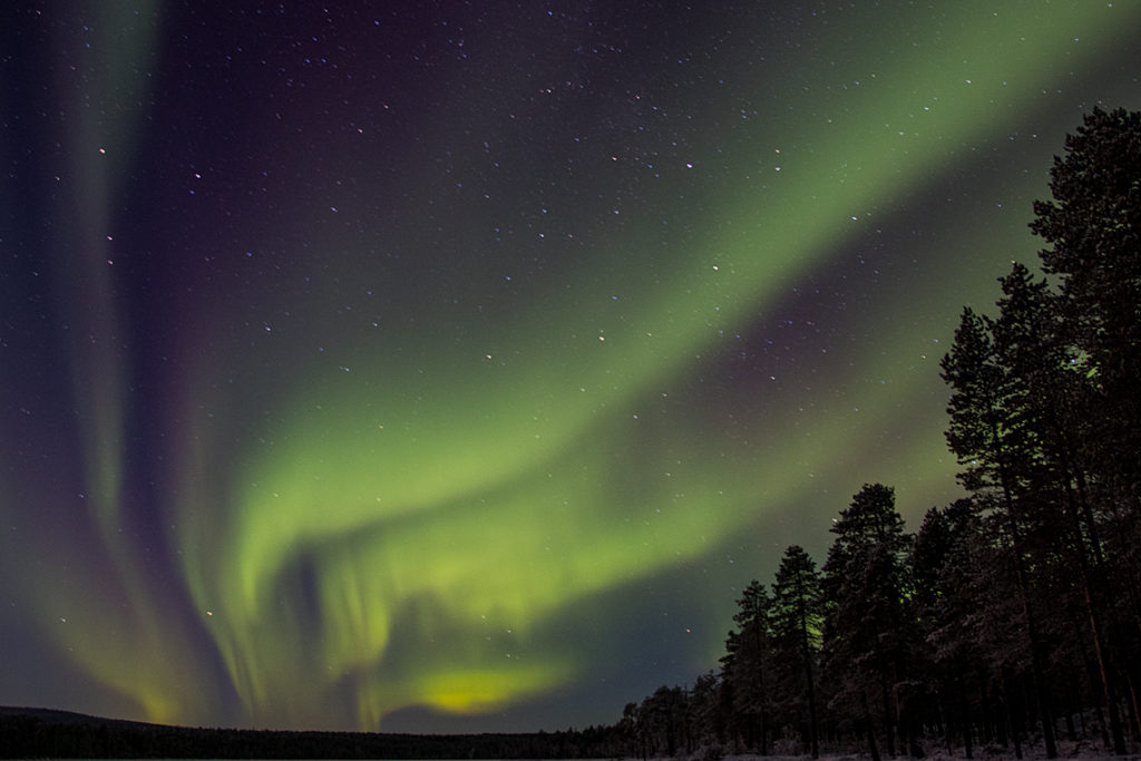 Spectacular Northern lights in Jokkmokk.