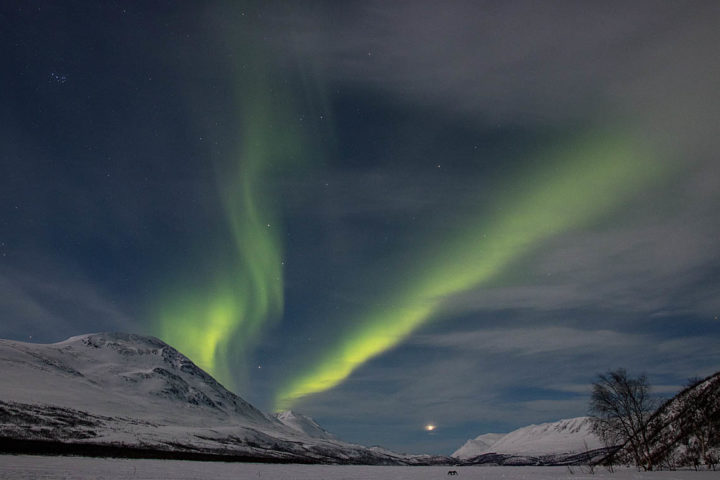 Aurora Borealis at Teusajaure, Swedish Lapland.