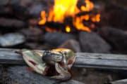 Färskfångad aborre och eld på kanotäventyr i Pärlälvens Naturreservat.